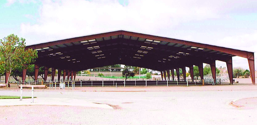 Horse Arena from All Steel Northwest Metal Buildings Serving Seattle Tacoma and beyond