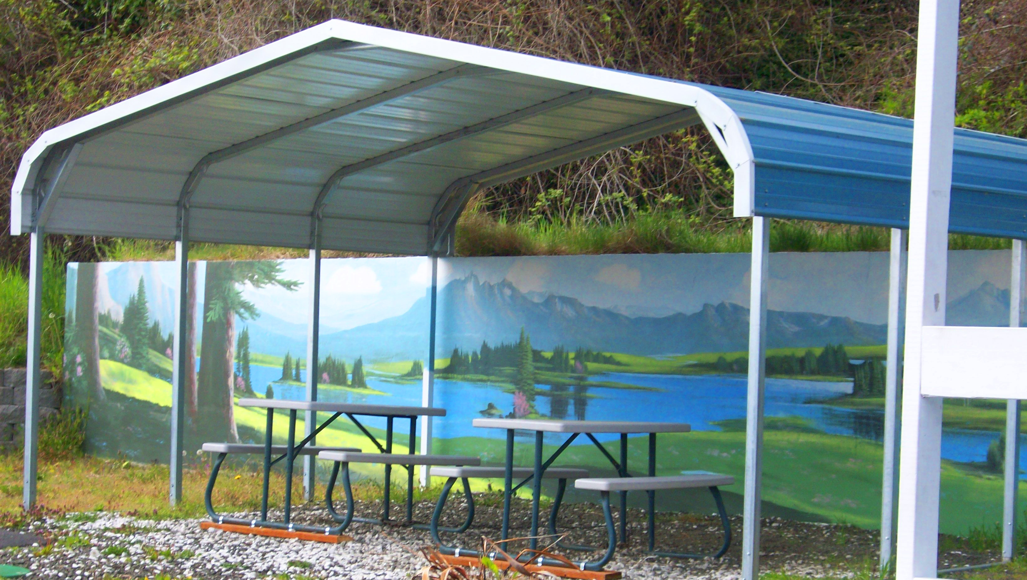 Metal Carports - the Seattle Area best solution for protecting your assets 2